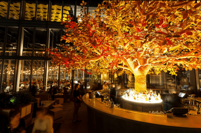 big tree in the middle of a restaurant